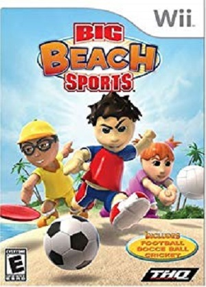 Big Beach Sports facts
