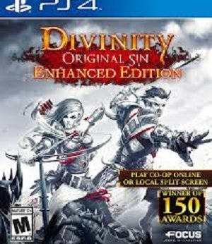 Divinity Original Sin facts