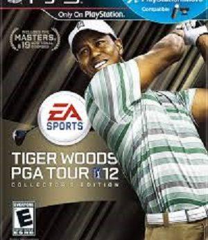 Tiger Woods PGA Tour 12 facts
