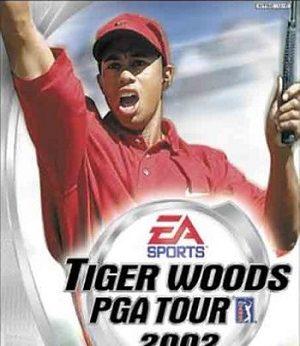 Tiger Woods PGA Tour 2002 facts