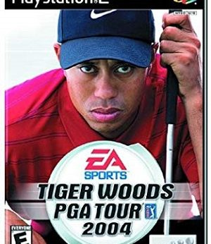 Tiger Woods PGA Tour 2004 facts