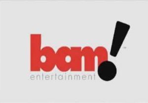 BAM! Entertainment facts and statistics