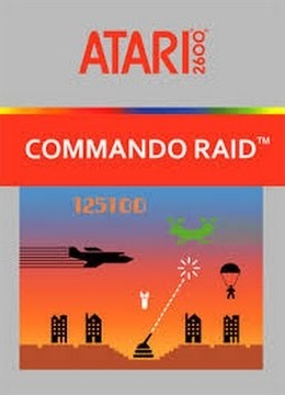 Commando Raid facts ststistics