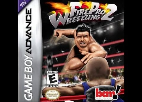 Fire Pro Wrestling 2 facts statistics