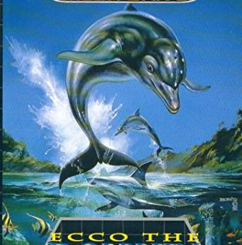 Ecco the Dolphin facts and statistics