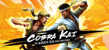 Cobra Kai The Karate Kid Saga Continues statistics and facts