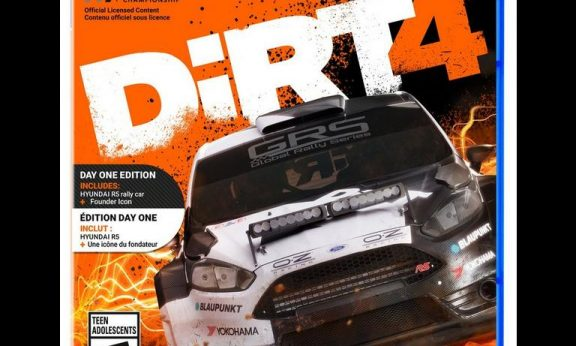 Dirt 4 stats facts