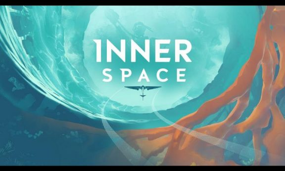 InnerSpace statistics facts