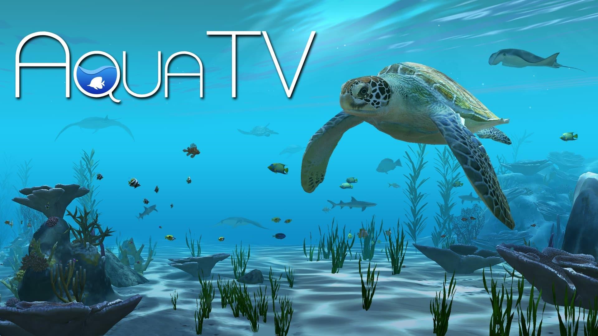 Aqua TV stats facts
