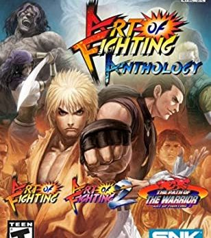 Art of Fighting Anthology stats facts